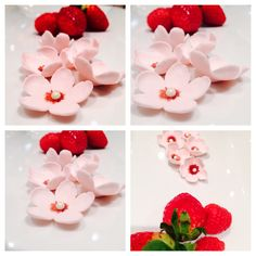 cherry blossom gum paste flowers and red berries