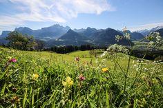Urlaub im Salzburger Saalachtal Mountains, Wallpaper, Nature, Travel, Vacation, Nice Asses, Naturaleza, Viajes, Wallpapers