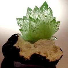 Green apophyllite from Lonavala Mine, Poonah, Maharashtra, India, Natural Crystals, Stones And Crystals, Natural Gemstones, Gem Stones, Cool Rocks, Beautiful Rocks, Minerals And Gemstones, Rocks And Minerals, Rock Flowers