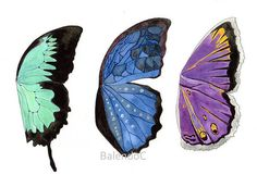 Art print of Original watercolor painting and ink and pencil drawing - illustration - Butterfly Wings