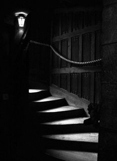 In the midnight hour as you creep around the house unable to sleep. You find a dim light shining down the stairs.