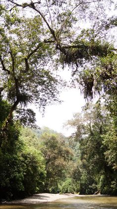 Betung Kerihun National Park, the heart of Borneo.   For more about the activities at the national park, head to this link: http://indohoy.com/betung-kerihun-national-park-5w1h-indohoy-style/