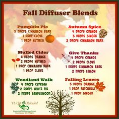 Holiday Cheer with a Diffuser | EssentialOilObsessed.com.  Fall diffuser blends