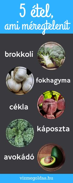 Medical, Health, Turmeric, Health Care, Medicine, Med School, Active Ingredient, Salud