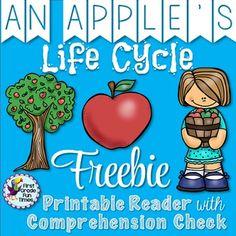 Apple Life Cycle Freebie