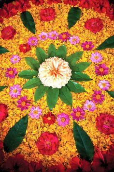 30 Best Simple and Easy Rangoli Designs!