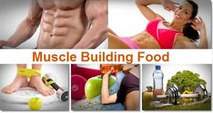 Muscle Building foods : What To Eat To Gain Muscle