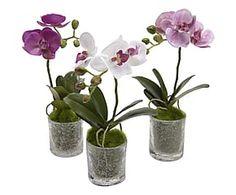 Set di 3 composizioni di Orchidea Phalae artificiale con vaso - h 28 cm