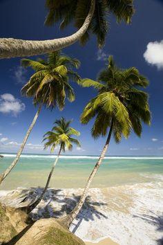 Dominican Republic. Waterfalls, Pristine Beaches...