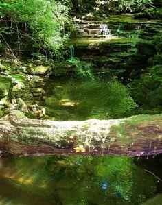 Peaceful Lagoon at John Bryan State Park