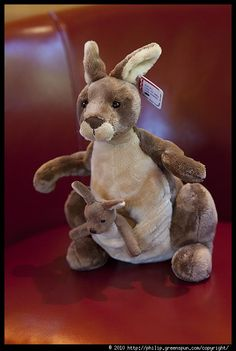 kangaroo-stuffed-toy-with-joey