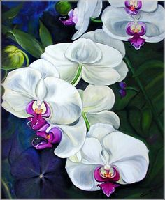 orchid paintings | White Orchid Oil Flower Painting