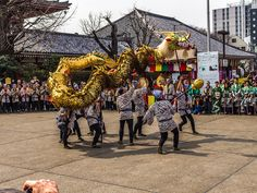 "Asakusa Golden Dragon Dance 1/4 It is March 18, the day of the founding of Sensoji so the Golden Dragon symbolizing the ""deity"" Kannon comes out of its lair and dances around the temple; the tradition started in 1958 to celebrate the rebuilding of Sensoji after the fire-bombing of Tokyo in 1945. #Asakusa, #Sensoji, #Golden, #Dragon March 18 2015 © Grigoris A. Miliaresis"