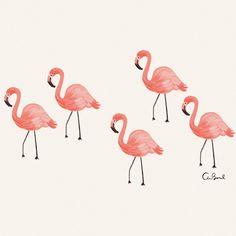 Flamingo 8x10 Art Print