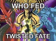 Feed TF