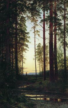 Ivan Shishkin: Twilight (1883) via Poul Webb Art Blog