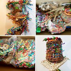 Cockatiel Toys, Budgies, Parrots, Diy Bird Cage, Bird House Plans, Bird Toys, Pet Toys, Mythology, Dragons
