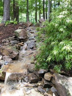 fontaine jardin ruisseau pierre foret plante