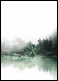 A sleek and stylish poster or print with photo art of forest and fog. Frame the poster to get a complete picture. Posters and prints with photos can be found in our webshop. Foggy Forest, Poster 70x100, Forest Poster, Photo Pop Art, Buy Posters Online, Prints Online, Online Art, Desenio Posters, Home Decor Ideas