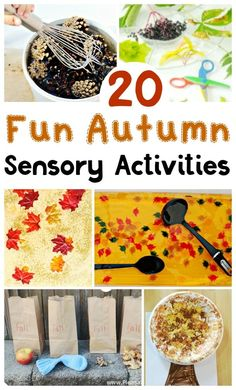 Fun Autumn Sensory Activities - Thimble and Twig - - Fun Autumn Sensory Activities for toddlers and preschoolers. Lots of ideas for easy Autumn Sensory setups. The best Autumn Sensory activity is. Toddlers And Preschoolers, Sensory Activities Toddlers, Autumn Activities For Kids, Toddler Preschool, Toddler Snacks, Fun Activities, Sensory Bins, Sensory Play, Easy Fall Crafts