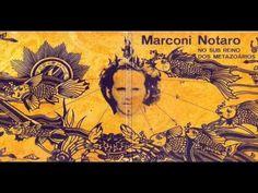 Marconi Notaro, No Sub Reino dos Metazoários