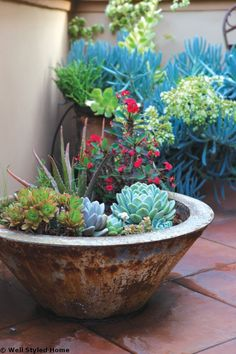 Money Saving Gardens: Home Garden Decoration