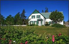 more PEI- Green Gables and everything