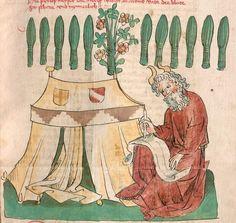 Historienbibel. Marienleben Hagenau/Elsass, 2. Viertel 15. Jh. Cgm 1101  Folio 272