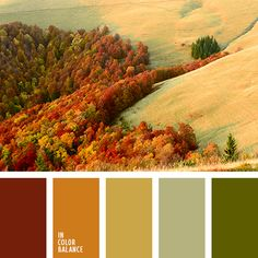 грязно-коричневый, желтый, зеленый, монохромная палитра, насыщенный оранжевый, оливковый, оттенки оранжевого, палитра для осени, подбор цвета для дома, темно-оранжевый, теплые оттенки, цвета осени 2017.