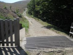 The border between France and Spain on the Camino's Route de Napoleon through the tail end of the Pyrenees. A cattle gate.