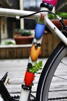 Bike Planter. I'd probably crash the bike and kill them all, though.