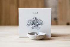 """Art direction, illustrations and graphic design for Camará's second album """"Bonsai"""" (2015), featuring a soulful selection of brazilian popular music (MPB)."""