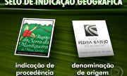 Globo Rural - Selo de Origem: conheça o queijo da Serra da Canastra (MG) | globo.tv