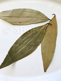 """Tej Patta, commonly misnamed """"Indian Bay Leaf"""". Bay laurel leaves taste completely different and are not interchangeable in an Indian recipe. If an Indian recipe calls for """"bay leaf"""", they mean Tej Patta."""