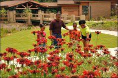 FLW Nature Center in Jonesboro, AR