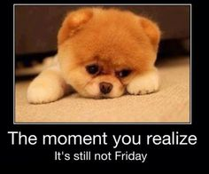 Moment you realize it's still not Friday!
