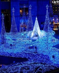 Winter Wonderland ☄️💫💎Went here last year and yet still amazed by it for the 2nd time #timeflies literally #inawe . #notyourordinary #illumination #christmas #feels #favorite #timeoftheseason #blessed #noedit #nofilter #shiodome #caretta #汐留 #shellyinjapan #lights #decorations #japantrip #japantravel #japanawaits #darlingescapes #igersjp #japantravels #wonderstruck #wanderlust #tokyotouristinfo #japanloverme #fujifilm