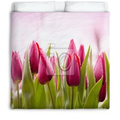 Fresh Tulips With Dew Drops Fleece/Cotton Queen/Full Comforter at http://www.visionbedding.com/fresh-tulips-with-dew-drops-fleececotton-queenfull-comforter-p-3325214.html  #Home Decor,#Fresh Tulips With Dew Drops Fleece/Cotton Queen/Full Comforter