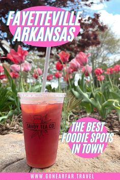 Visiting Fayetteville Arkansas? Use this two day guide to find out what to do in town so you don't miss any of the best sights, food, hiking or restaurants | Fayetteville Arkansas restaurants | Arkansas Hiking | Fayetteville Arkansas Food | Things to do in Fayetteville AR Dickson Street, Road Trip Photography, Fayetteville Arkansas, Destinations, Things To Do, Good Things, University Of Arkansas, Road Trip Essentials, Road Trip Usa