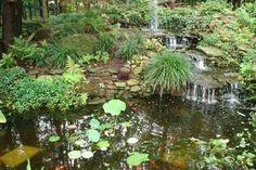 love water gardens...