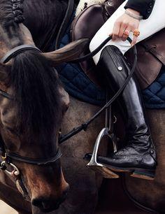 Jewels & Horses