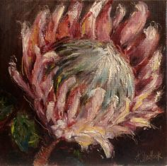"""Pretty pink protea"" daily painting by Heidi Shedlock Oil Painting Flowers, Painting Tips, Painting & Drawing, Flower Paintings, Acrylic Paintings, Protea Art, Protea Flower, Draw On Photos, Plant Illustration"