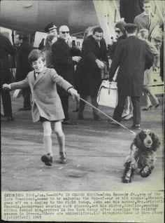 "1969 John F Kennedy Jr Enjoying His Spaniel ""Shannon"" Press Photo   eBay"