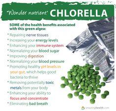 Wonder Nutrient Chlorella ~ Health benefits