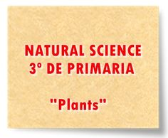 "NATURAL SCIENCE DE 3º DE PRIMARIA: ""Plants"" Social Science, Science And Nature, Natural, Editorial, English, Socialism, Home, Teaching Resources, Science Area"