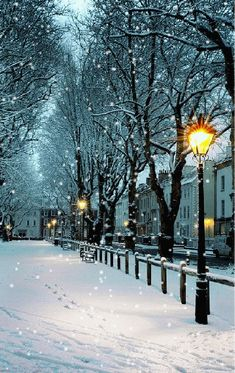Charming Photos of Winter Scenery Winter Szenen, Winter Magic, Winter Time, Summer Time, Foto Gift, Foto Picture, Snow Scenes, Winter Beauty, Winter Pictures