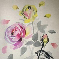 #sashaunisex #watercolor #rose #beautiful