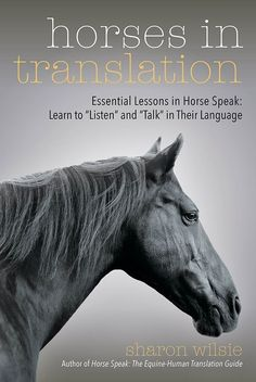 Horse Speak: The Equine-Human Translation Guide by Sharon Wilsie & Gretchen Vogel - Horse and Rider Books Equestrian Outfits, Equestrian Style, Equestrian Fashion, Westerns, Horse Information, Highlights, Riding Hats, Riding Gear, Horse Books