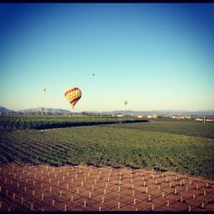 The best way to experience wine country @CAL_dreamin #temeculawine