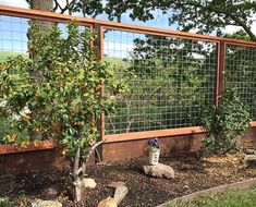 Removable Fence No Permit Required Removable Privacy Pinterest